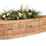 environmental_coffin-willowa__large