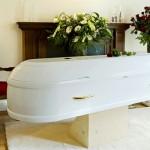 evolution_casket__large